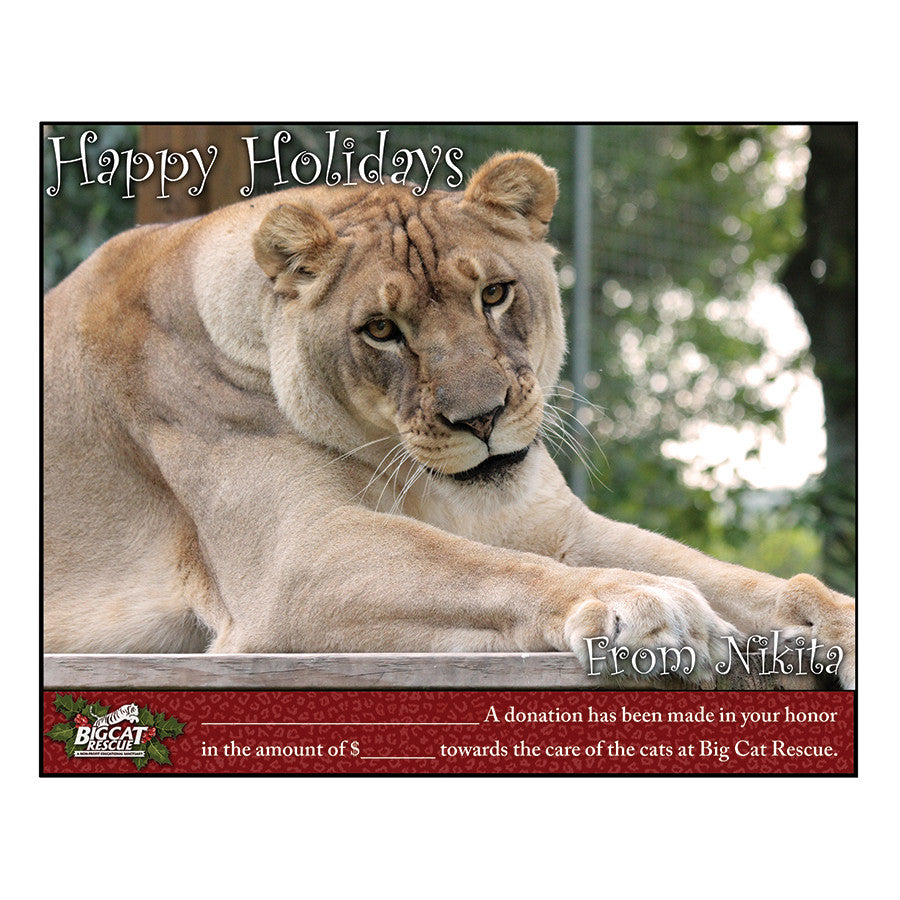 Donation - Downloadable Holiday Acknowledgment Nikita Lioness