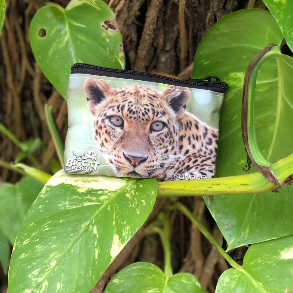 Coin Purse - Sundari Leopard