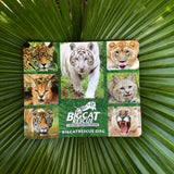Mouse Pad - Big Cat Photo Collage