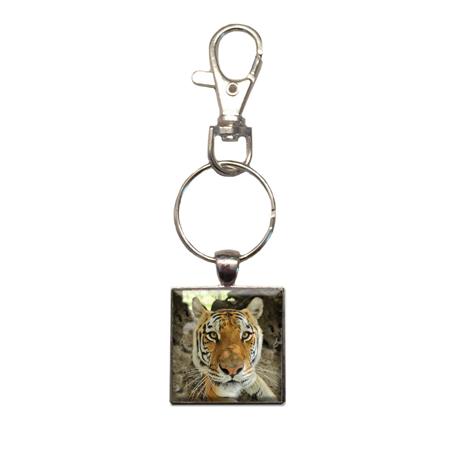 Key Chain - Metal Photo Dutchess Tigress