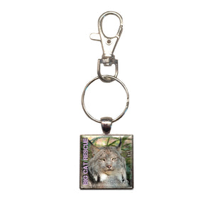 Key Chain - Metal Photo Gilligan Canada Lynx