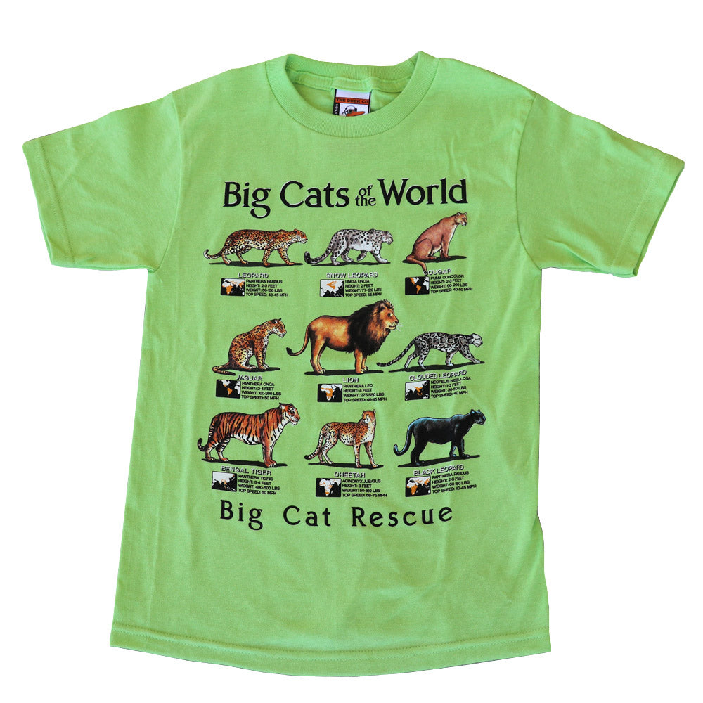 Kids Shirt - Cats of the World
