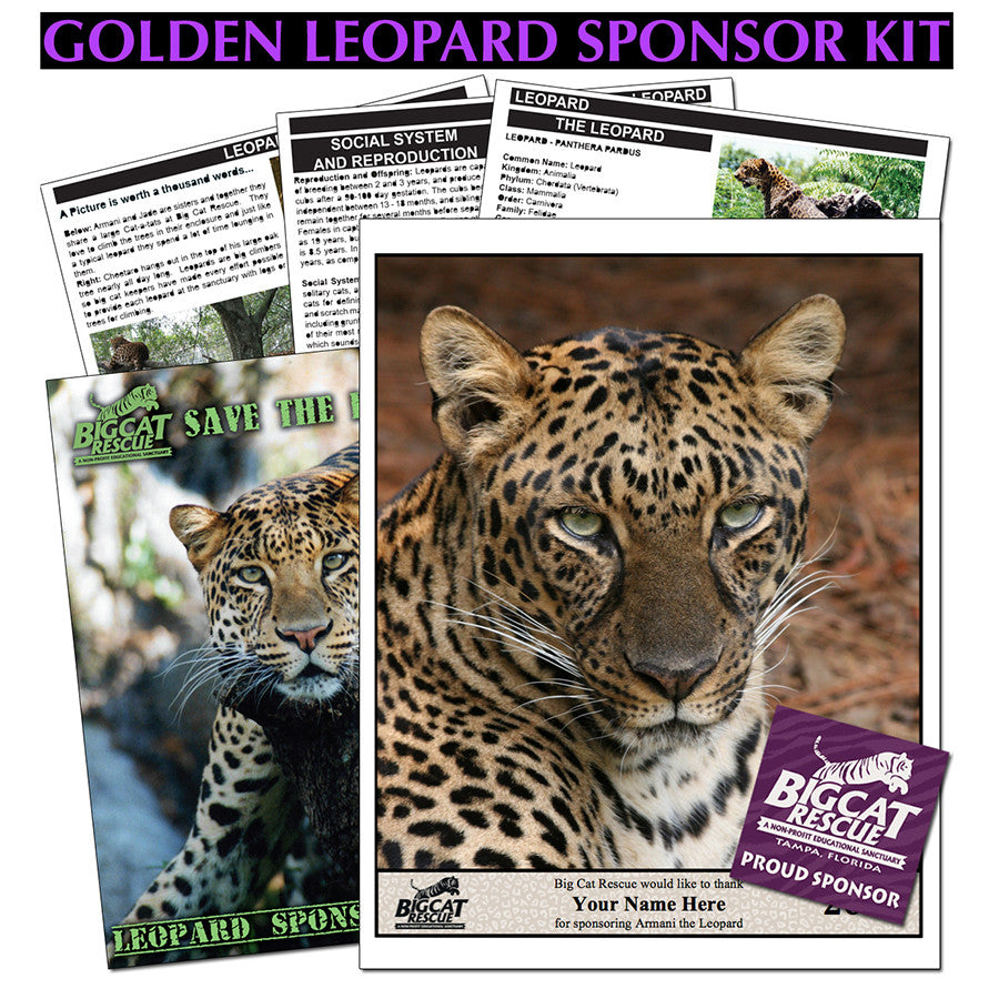 donate to adopt and save leopards by sponsoring