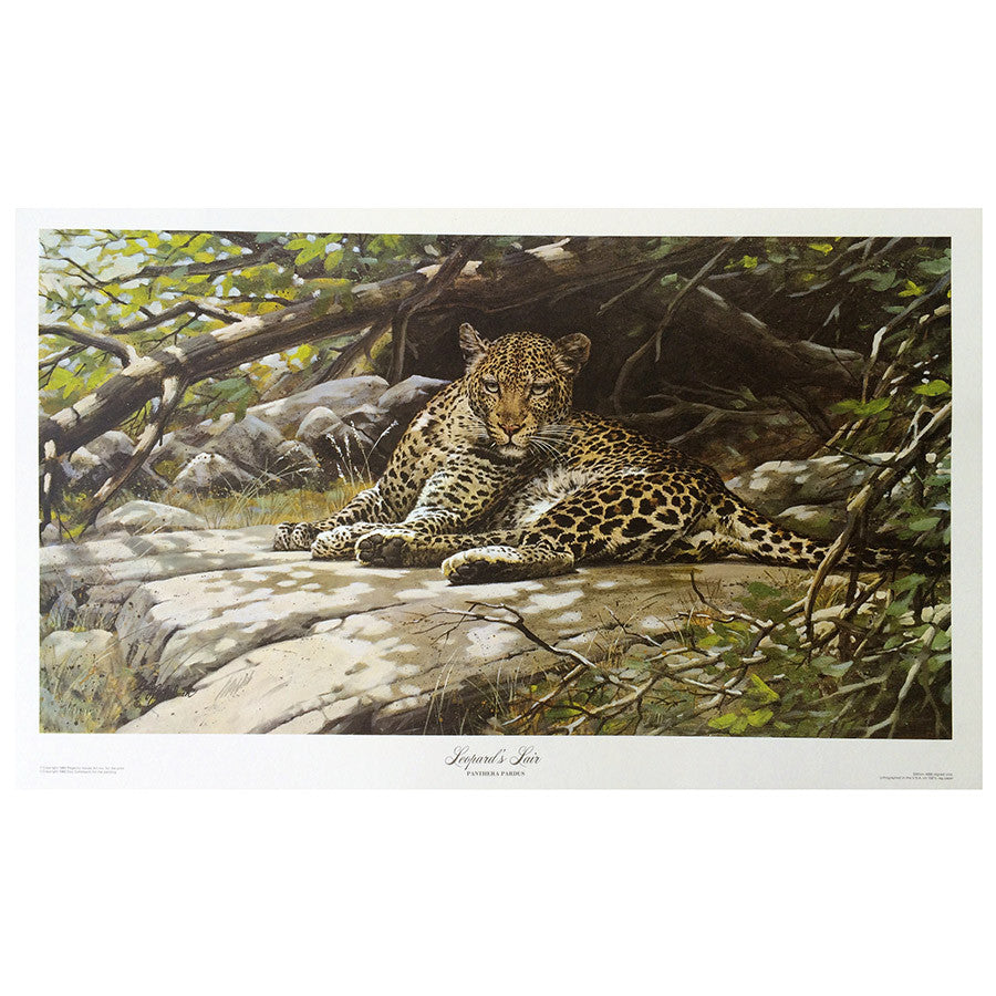 Print - Leopard Lair by Guy Coheleach