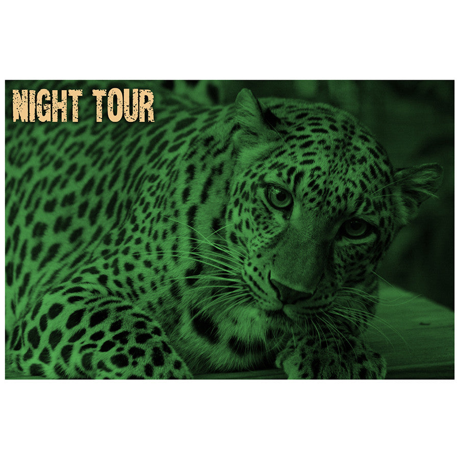 Gift Certificate - Night Tour