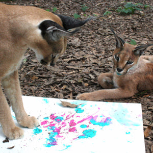 Bag - Caracal Paw Painting Tote