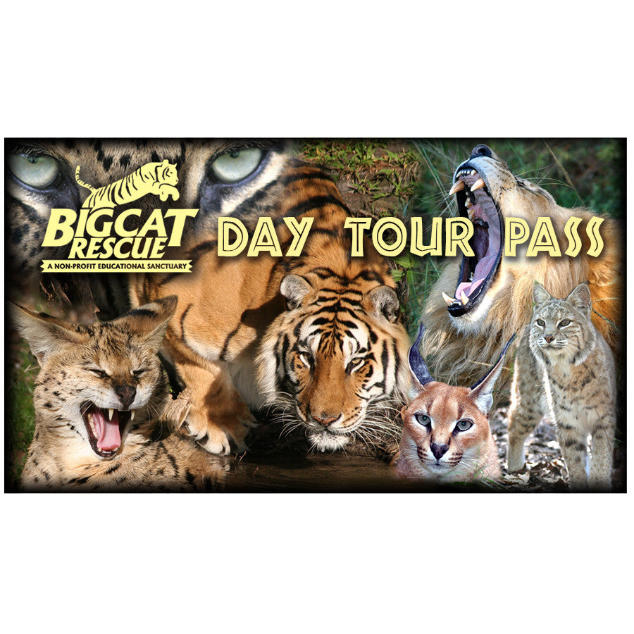 Gift Certificate - Day Tour