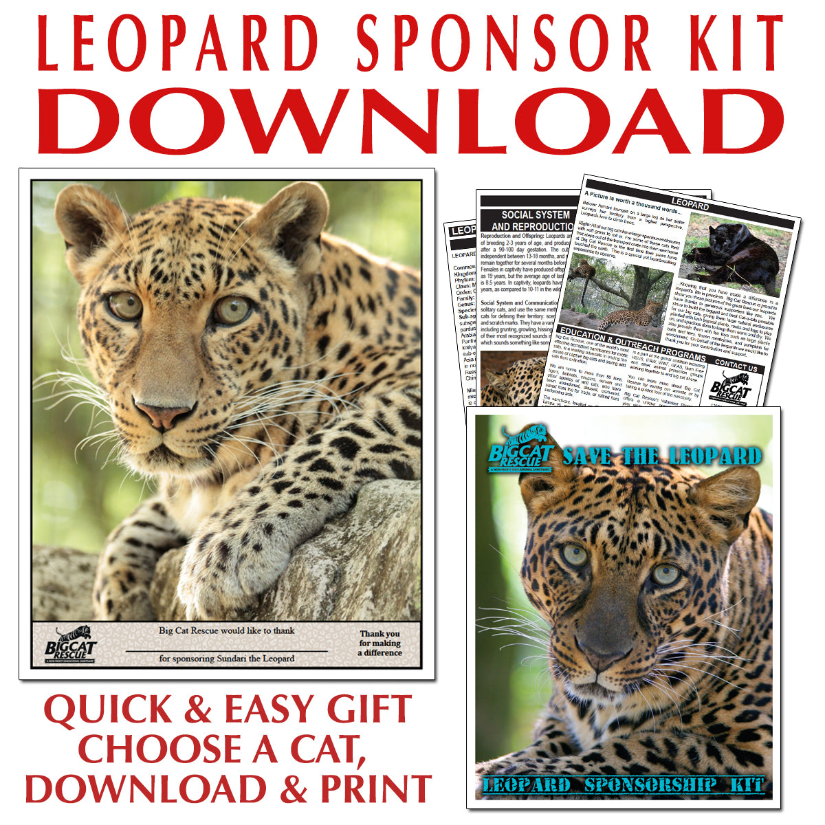 Download - Leopard Sponsorship