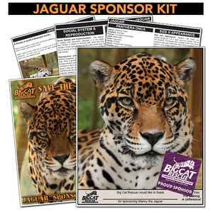 Sponsorship - Jaguar