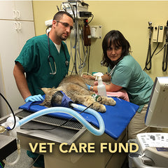 Donation - Veterinary Care
