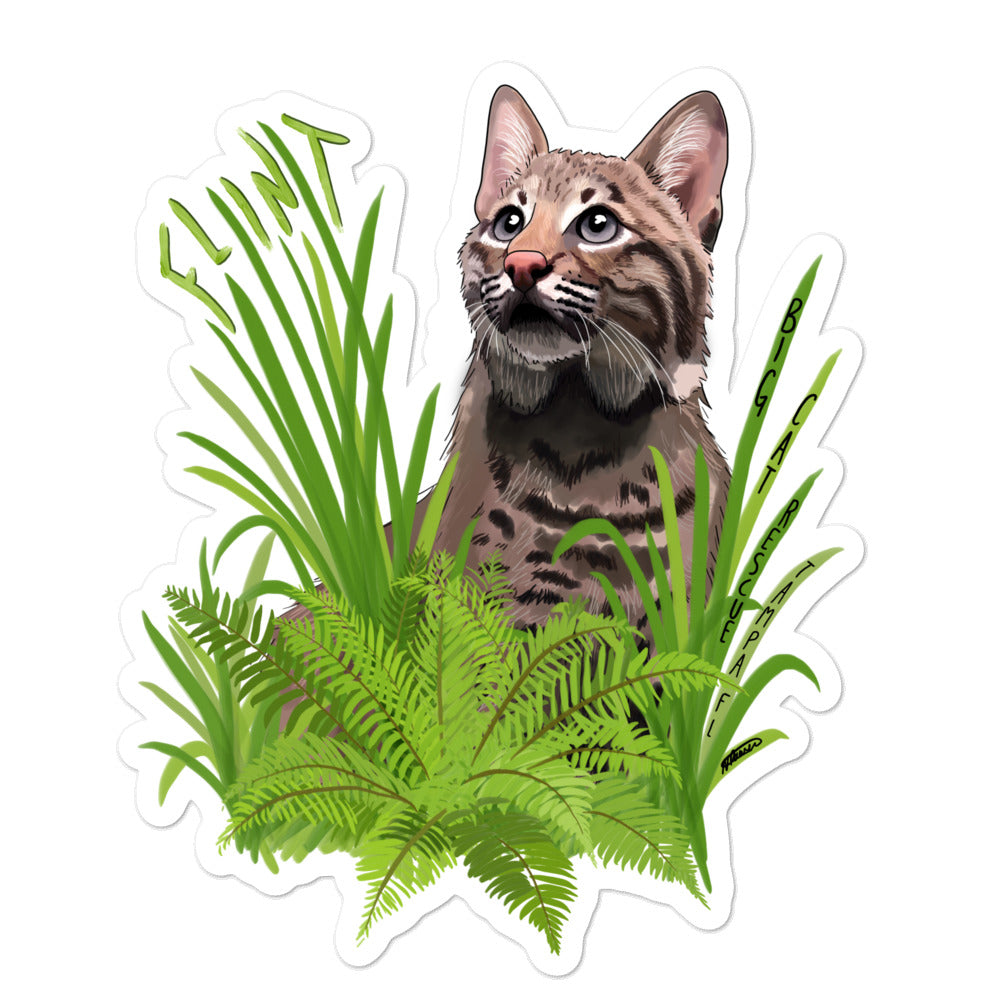 Sticker - Flint the Curious Bobcat