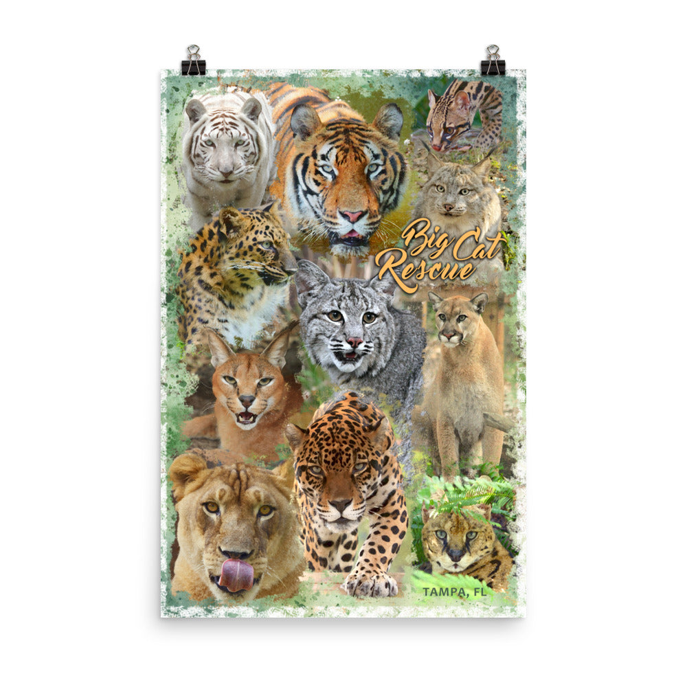 Poster - Big Cat Watercolor Collage