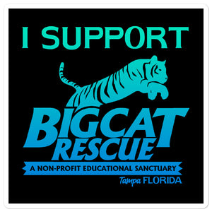 Sticker - I Support Big Cat Rescue