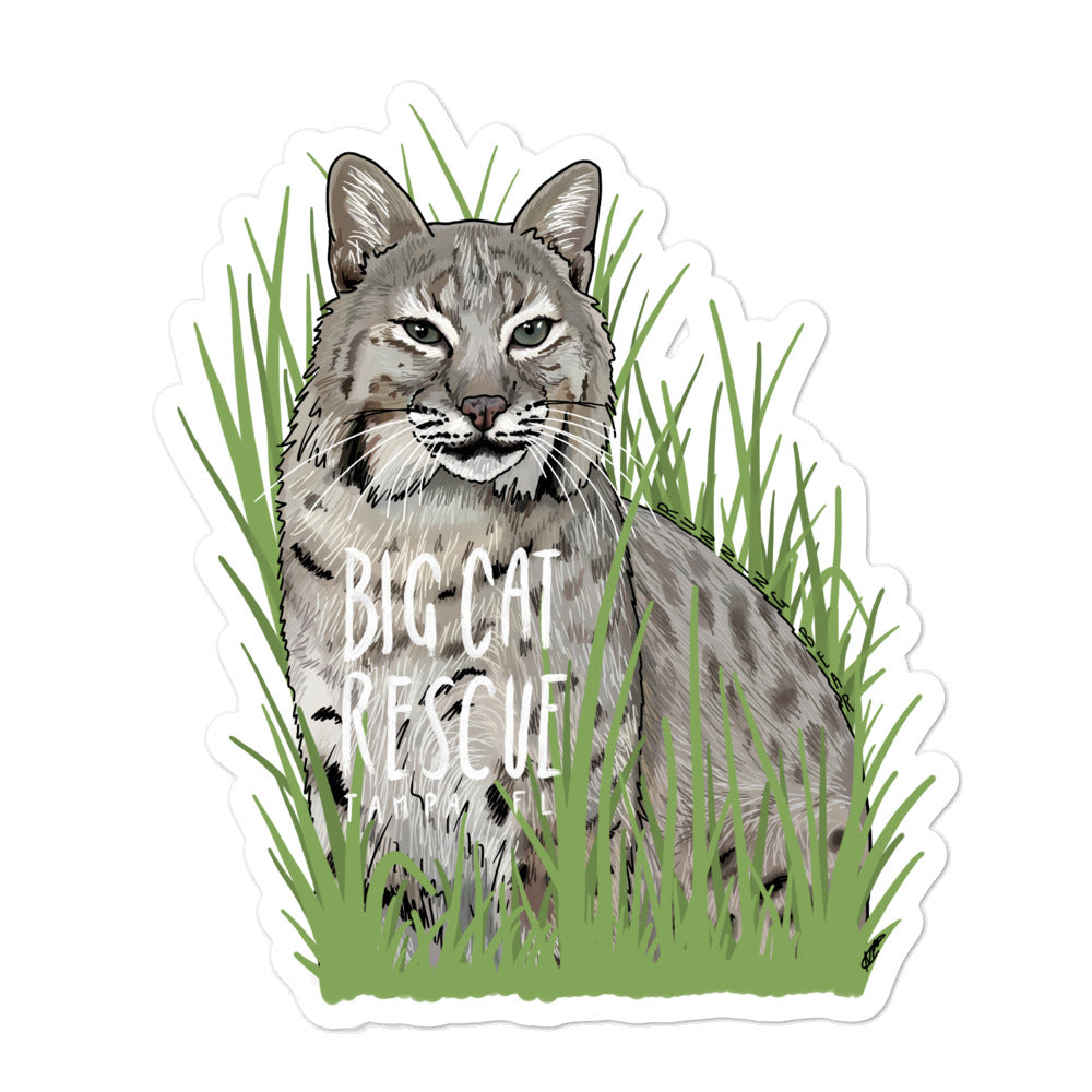 Sticker - Running Bear Bobcat