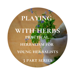 July 31, Aug 7, Aug 14 - Playing with Herbs: Practical herbalism for young herbalists