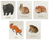 Organic Cotton Patches - Animals - 5 Designs to Choose From!