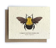 Bee Project Greeting Cards - 100% of Profits to Save the Bees - Plantable Seed Paper