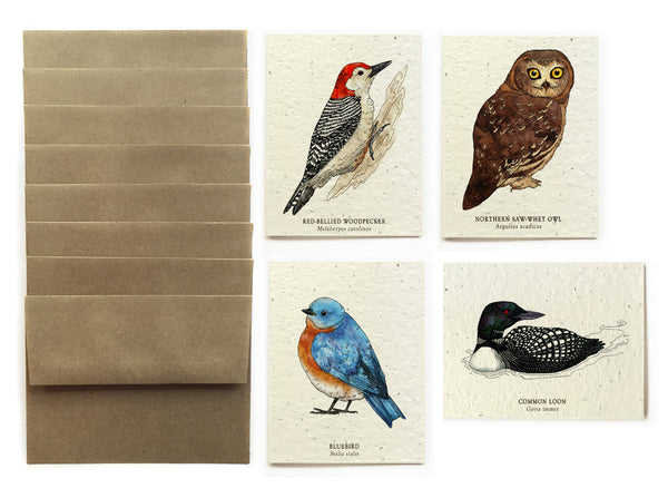 Bird Greeting Cards - Set of 8 - Plantable Seed Paper