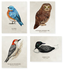 Organic Cotton Patches - Birds - 4 Designs to Choose From!