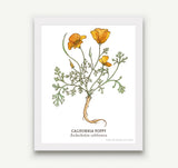 Botanical Prints - 8 x 10 - 15 Designs to Choose From!