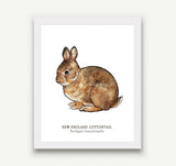 Animal Prints - 8 x 10 - 15 Designs to Choose From!
