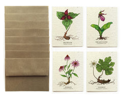 At-Risk Flowers Greeting Cards - Set of 8 - Plantable Seed Paper