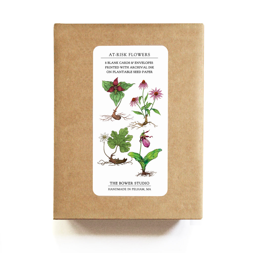 At Risk Flowers Greeting Cards Set Of 8 Plantable Seed Paper