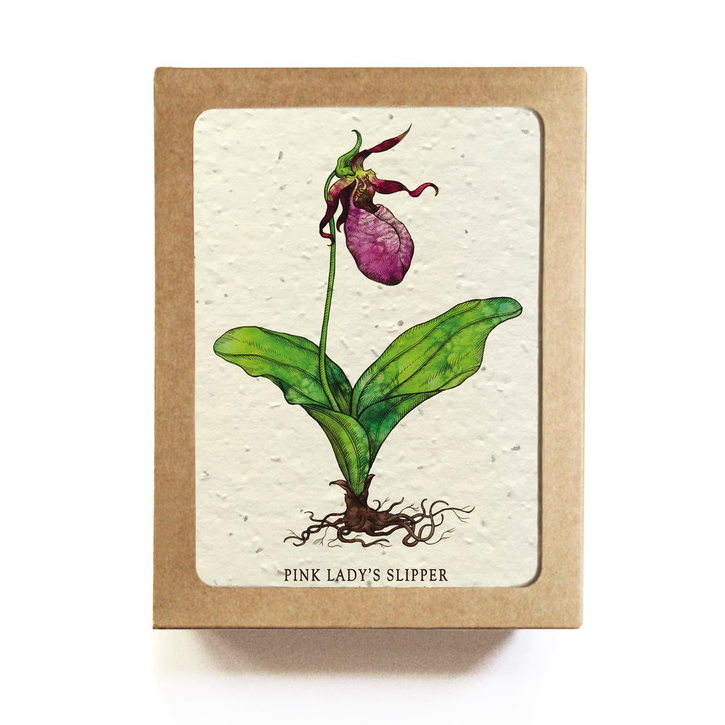 ... At Risk Flowers Greeting Cards   Set Of 8   Plantable Seed Paper ...