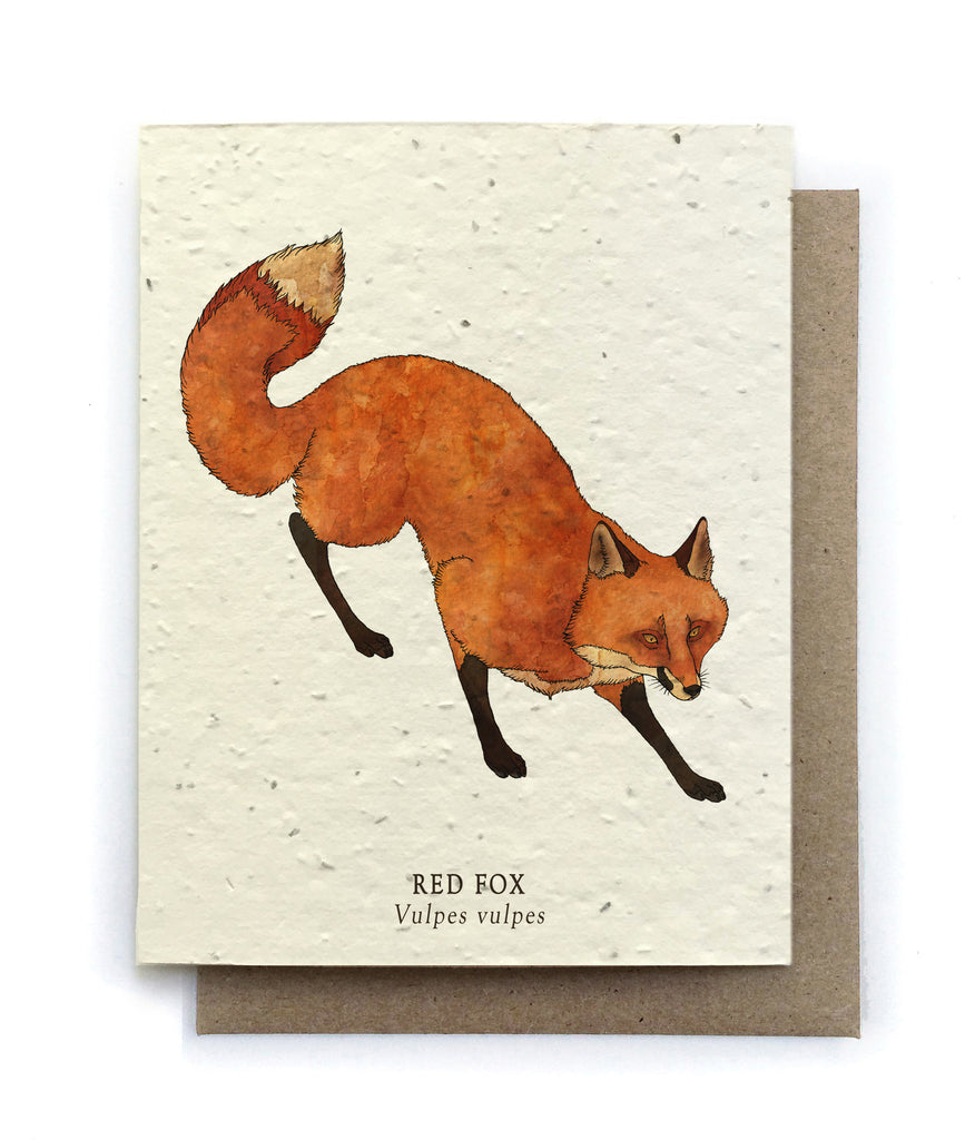 Animal Greeting Cards Plantable Seed Paper 6 Designs To Choose