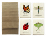 Insect Greeting Cards - Set of 8 - Plantable Seed Paper
