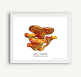 Wild Mushroom Prints - 8 x 10 - 6 Designs to Choose From!