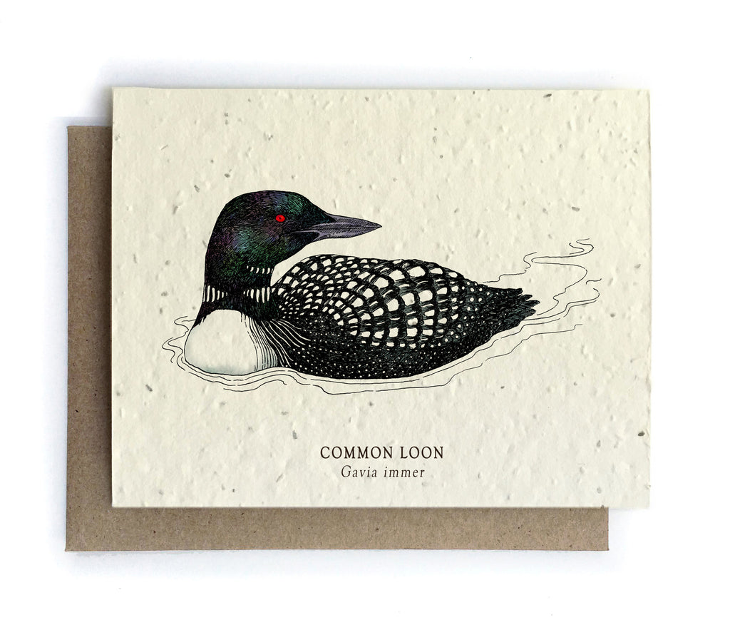 Bird Greeting Cards Plantable Seed Paper 4 Designs To Choose
