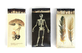 Natural History Matches