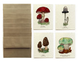 Wild Mushroom Greeting Cards - Set of 8 - Plantable Seed Paper