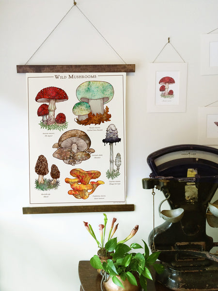 Wild Mushrooms Canvas Wall Hanging
