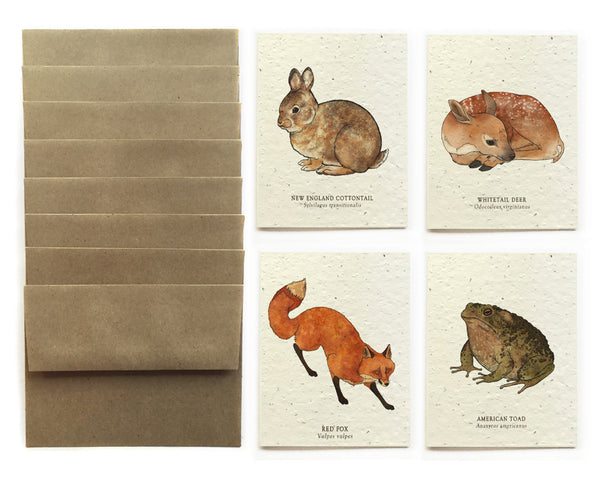 Forest Wildlife Greeting Cards - Set of 8 - Plantable Seed Paper