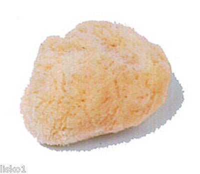 "KINGSLEY CB-SEA 2"" Dia NATURAL SEA SPONGE CLEANSING,BATHING & COSMETIC  ( 1-PK )"