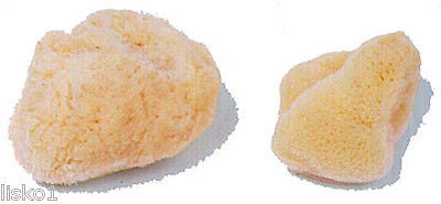 NATURAL SEA SPONGE CLEANSING,BATHING & COSMETIC  ( 2-PK )