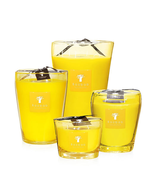 Baobab Collection - Beach Club South Beach Max 24 Candle