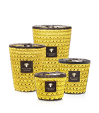 Baobab Collection - Tsiraka Diego Suarez Max 24 Candle