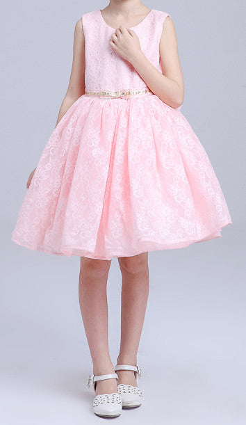 Kids  Pink  Allover  Lace With Bow Dresses EM206KE