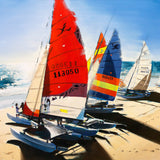 hobie beach (creative collectable)