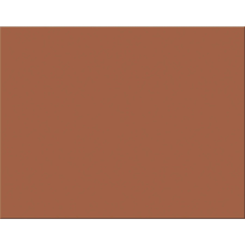 4 PLY RR POSTER BOARD 25 SHT BROWN
