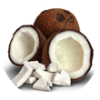 8 Amazing Benefits of Using Coconut Oil