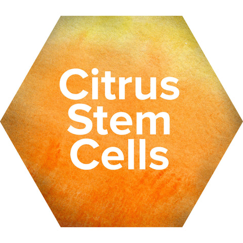 Citrus Stem Cells