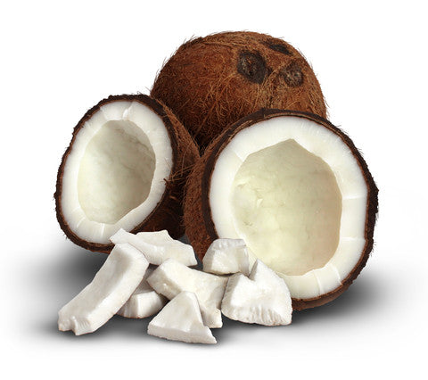 InstaNatural Coconut Oil Benefits - Coconuts