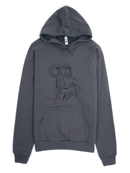 Aries Fleece Hoodie sweater