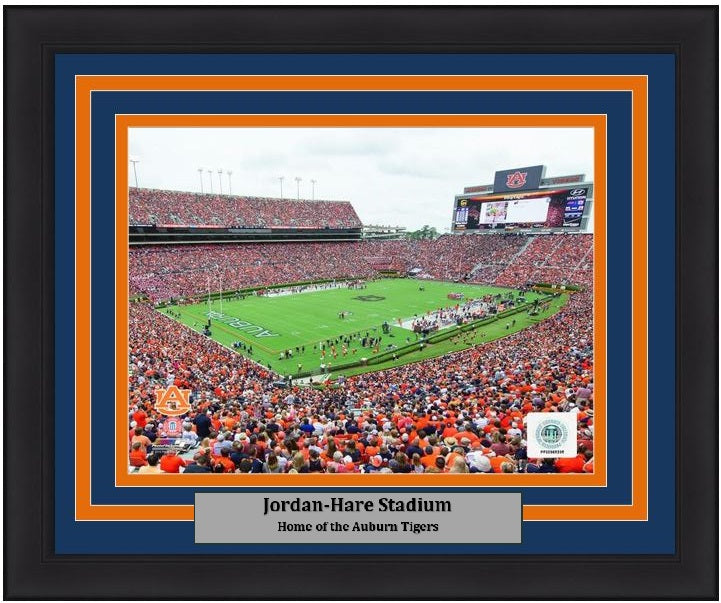 "Auburn Tigers Jordan-Hare Stadium NCAA College Football 8"" x 10"" Framed and Matted Photo"