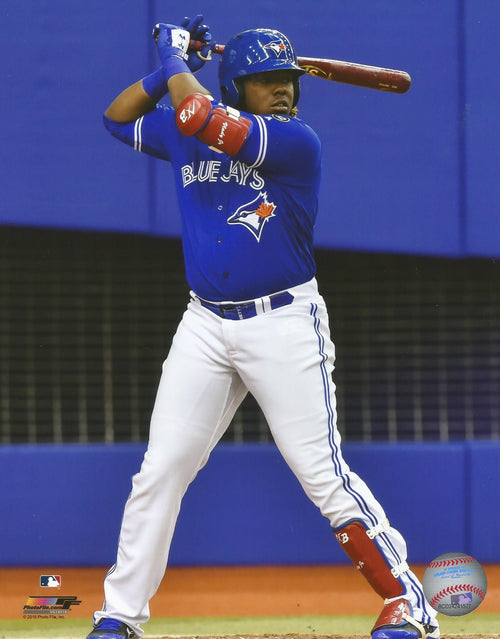 Toronto Blue Jays Vladimir Guerrero, Jr. At-Bat MLB Baseball Photo
