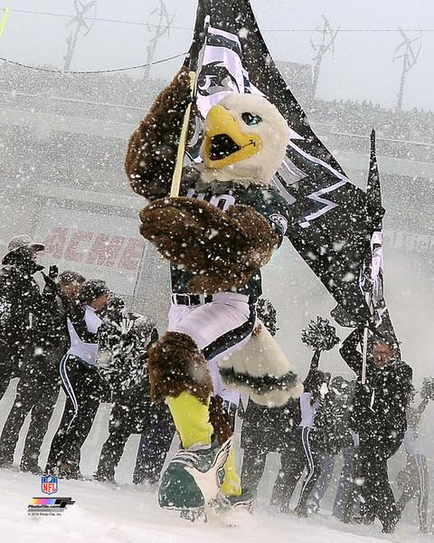 "Swoop in the Snow Philadelphia Eagles NFL Football 8"" x 10"" Mascot Photo"